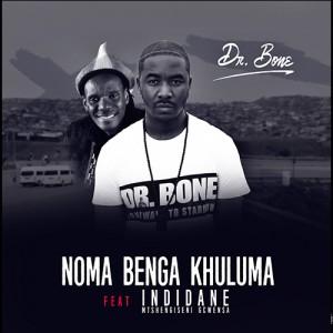 Dr Bone